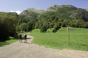 08.Pineta-Sallent de Gallego.JCH_8748